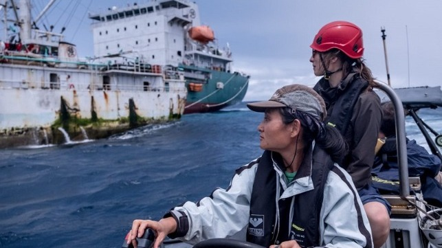 greenpeace fisheries observers