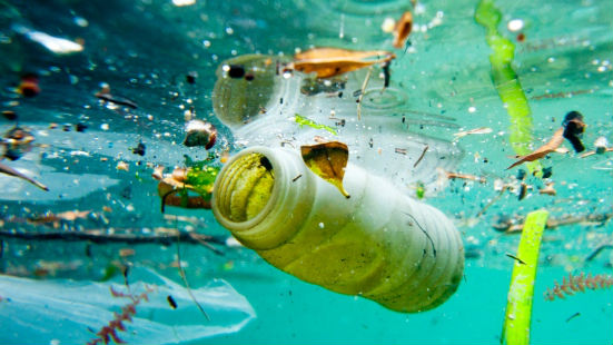 Biodegradable Plastic Doesn't Degrade in the Sea