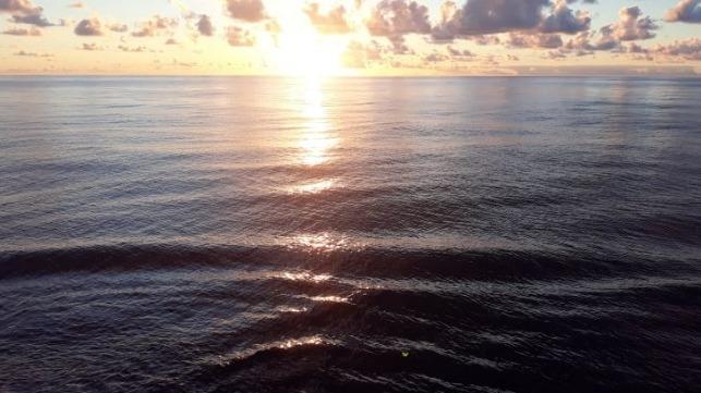 Ocean Storage of CO2