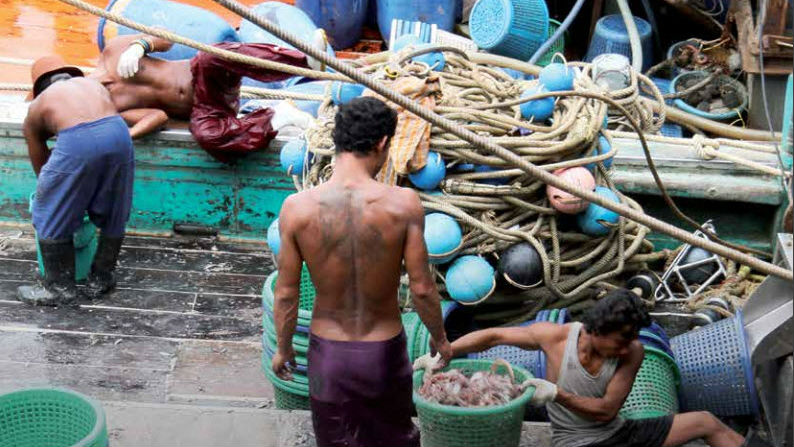 Thai fishing slaves