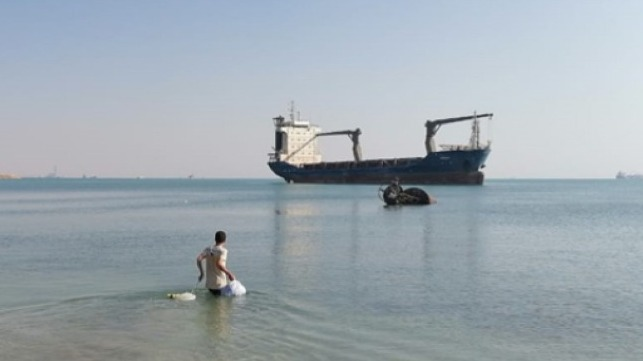 abandoned seafer in Egypt goes home