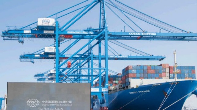 Abu Dhabi Terminals and COSCO Increase Cooperation