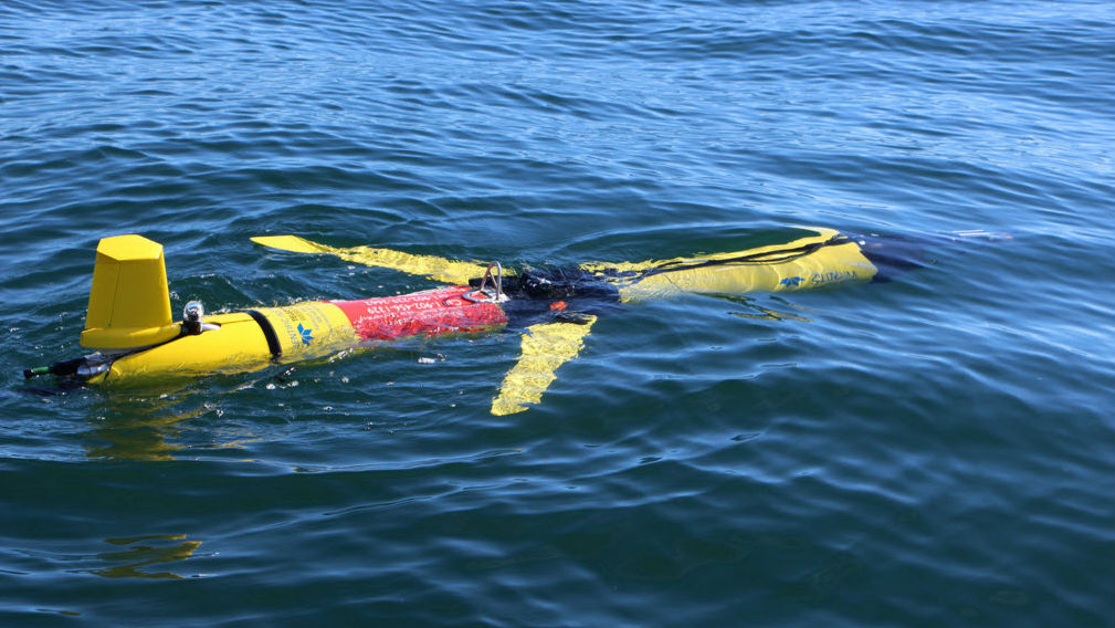 Subsea Glider Listens to Whales - The Maritime Executive