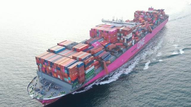 video survey of damaged containers on ONE Apus